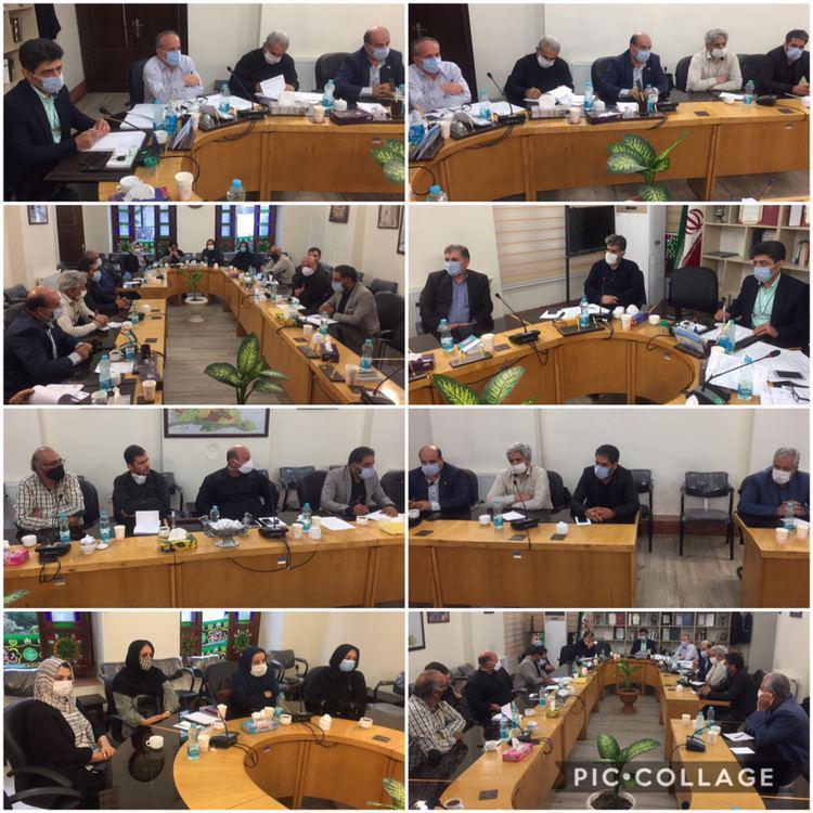 دیدار جمعی از شهروندان با اعضای شورای اسلامی شهر و امیری شهردار رودهن