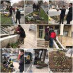 عملیات کاشت گلهای فصلی در سطح شهر رودهن