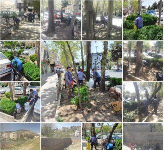 پاکسازی فضای_سبز بلوار اصلی شهر رودهن و زباله های رها شده در محیط توسط واحد خدمات_شهری
